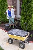 Senior woman working in the garden mulching — Stock Photo