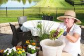 Senior gardener potting up a large planter — Stock Photo