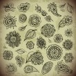 Set of vintage vector Floral hand drawn elements for design — Stock Vector