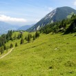 In the Bavarian Alps — Stock Photo