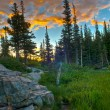 Sunrise in Rockies — Stock Photo #14167880