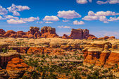 Needles in Canyonlands — Stock Photo