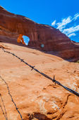 Barb Wire with Glass Arch in the background — Stok fotoğraf