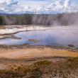 Stock Photo: Solitary Geyser