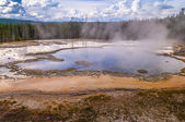 Ensam geyser — Stockfoto