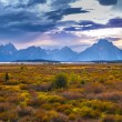Stock Photo: Fall in Grand Tetons