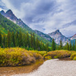 Beautiful Autumn near Cascade Creek - Grand Teton National Park — Stock Photo #33541057