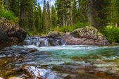Cascade Creek Grand Tetons — Stock Photo