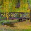 Stock Photo: Autumn Bridge