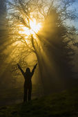 Girl in the rays of light — Stock Photo