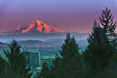 Mount Hood at Sunset — Stock Photo