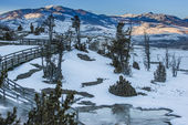 Yellowstone Winter Landscape — Stock Photo