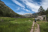 Female hiker on the Cub Lake trailhead in Rocky Muntain national — Stock Photo