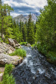 Glacier creek with Flattop Mountain — Stock fotografie