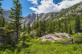 Hallett Peak and Flattop Mountain Colorado Rockies — Foto Stock