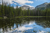 Bierstadt Lake Colorado — Stock fotografie