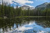 Bierstadt Lake Colorado — Foto Stock