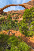 Landscape Arch  — Stock Photo