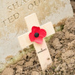 Wooden cross with a poppy for remembrance — Stock Photo