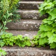 Stone steps ascending — Stock Photo