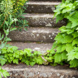Stock Photo: Stone steps ascending
