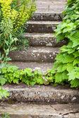 Stone steps ascending — Stock Photo