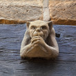 Stock Photo: Gargoyle wall mounted.