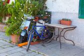 Bicycle and a motor scooter left and overgrown by shrubs — Stock Photo