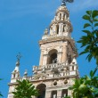 Giralda tower at Seville cathedral — Stock Photo