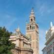 Giralda tower at Seville cathedral — Stock Photo #35800053