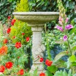 Summer bedding flowers with decorative stone bird bath — Stock Photo
