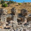 Ephesus ancient greek ruins in Anatolia Turkey — Stock Photo #39698083