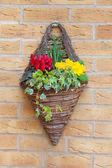 Wall mounted hanging basket with spring flowers — Stock Photo
