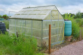 Allotment garden green house with water butt — Stock Photo