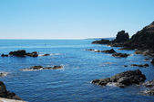 Glistening sea and rocks looking south from St. Abbs — Foto Stock