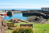 Harbour, boat, seats and lifeboat shed at St. Abbs — Foto Stock