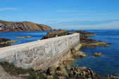 Pier, seagulls, cliffs and coast at St. Abbs, Berwickshire — Stock Photo