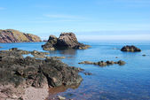 Rocks, cliffs and sea at St. Abbs — Foto Stock