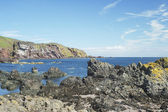 Cliffs and coast at St. Abbs, Berwickshire — Foto Stock