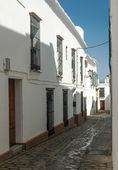 白い家で飾られた通り — ストック写真