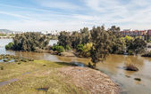 Guadian river in Merida — Stock Photo