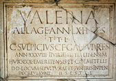 Tombstone with Latin letters — Stockfoto