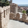 Stock Photo: Wall in Avila