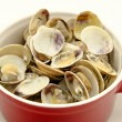 Clam — Stock Photo #27520167