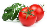 Red tomatoes with leaf — Stock Photo