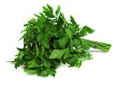 Bunch of fresh parsley — Stock Photo