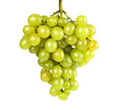 Ripe green grapes on a white background — Stock Photo