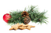 Pine branch with cones decorations and biscuits — Stock Photo