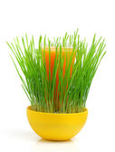 Ecological food.Cocktail in the grass. — Stock Photo