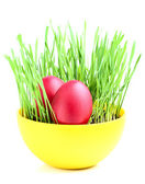 Easter eggs in a bowl with sprouted wheat. — Stock Photo